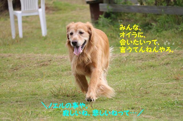 IMG_5693.jpg
