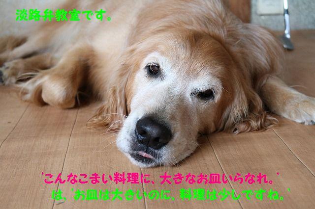 IMG_6104.jpg