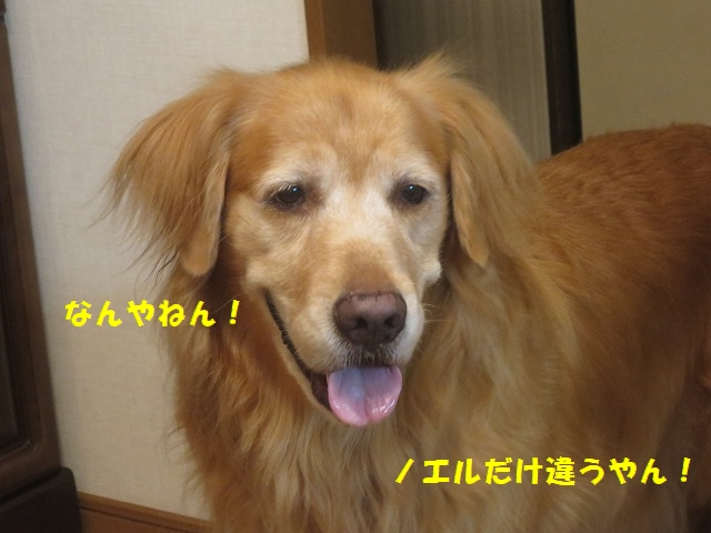 IMG_8817.jpg