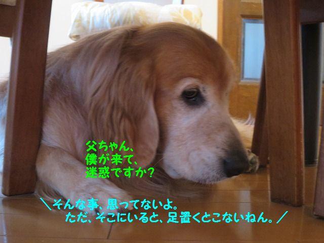 IMG_8957b.jpg