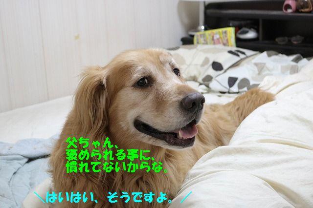 IMG_9572.jpg