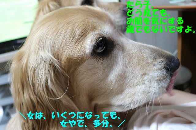 IMG_9695.jpg