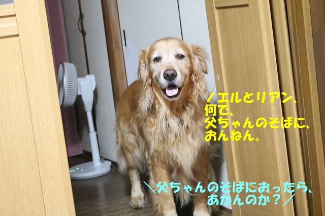IMG_9991.jpg