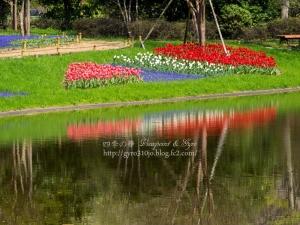 昭和記念公園 K