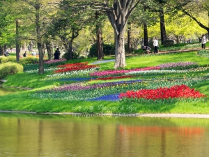 昭和記念公園 L
