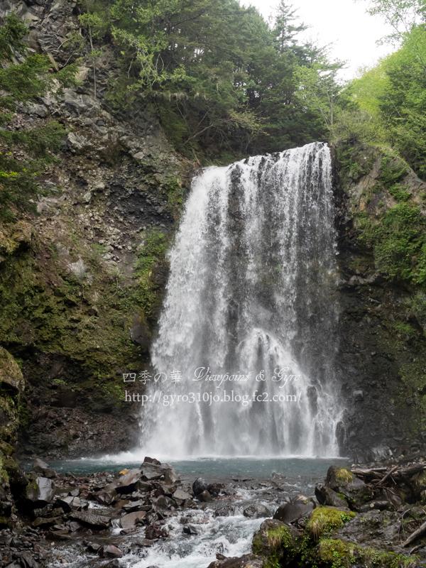 善五郎の滝 N