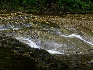 濃溝の滝 H