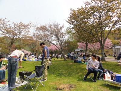 桜まつり 002