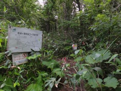 富良野岳・十勝岳 051