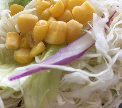 茄子と豆腐と粗挽き肉の四川風麻婆定食 サラダ