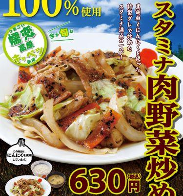松屋フーズ スタミナ肉野菜炒め