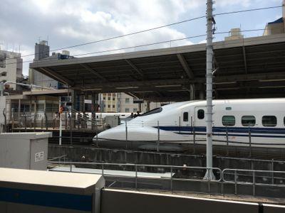 あおなみ線 新幹線ホームの横です