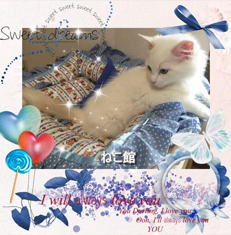 blog2_20160608090337b8f.jpg
