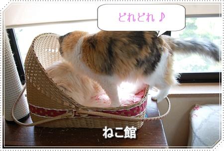 blog3_2016060818463745e.jpg