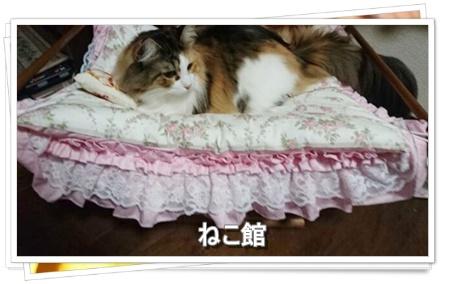blog3_201607140625522ed.jpg
