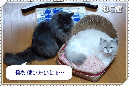 blog8_20160608184702609.jpg