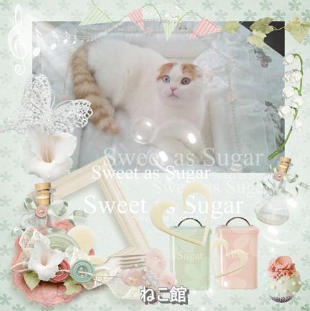 blog_20160425094751100.jpg