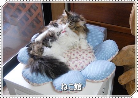 blog_201607120837233e9.jpg