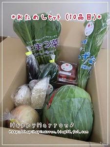熊本野菜2