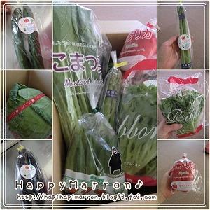とっぺん野菜2