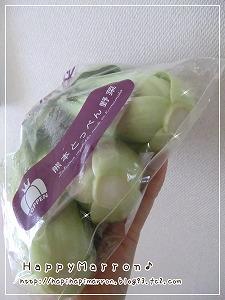 とっぺん野菜4