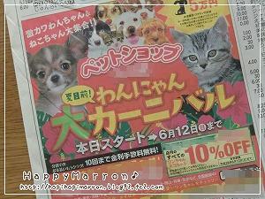 ペット広告1