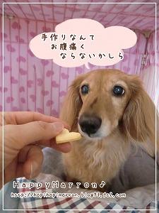 ボーロ味クッキー3