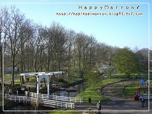 キューケンホフ公園3