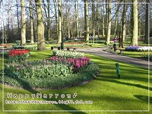 キューケンホフ公園4