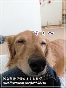 甘えっ子2