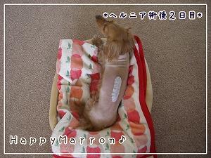 日帰りオペ1