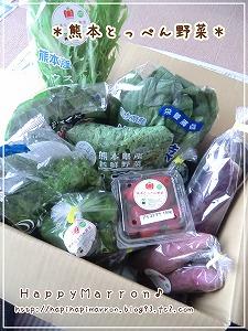 とっぺん野菜1