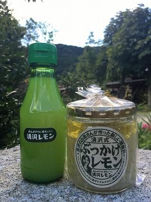 kiyosawa172 (2)