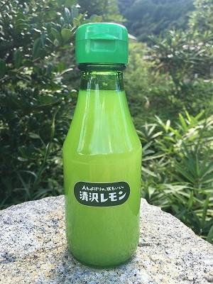 kiyosawa172 (1)
