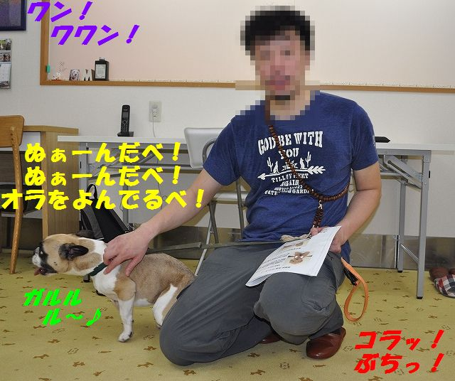 DSC_0006_20160726153946121.jpg