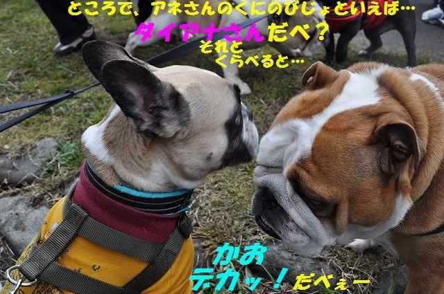 DSC_0128_20160413163215ef7.jpg