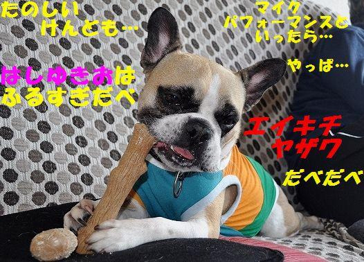 DSC_0257_20160601170901a40.jpg