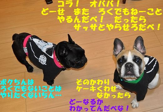 DSC_0320_20160418135745afe.jpg