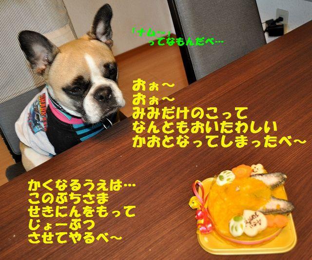 DSC_0359_2016042014185867e.jpg