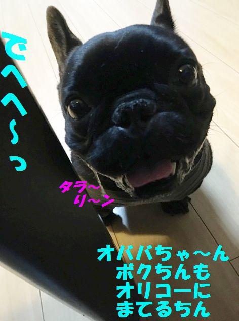 IMG_5499.jpg