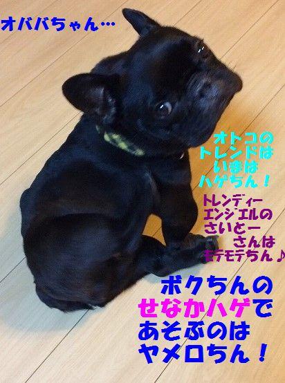 IMG_7960.jpg