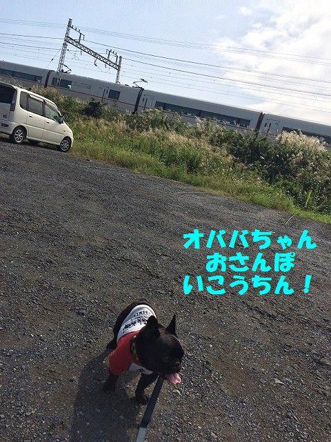 IMG_7996_20161003093227675.jpg