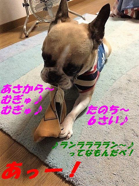 IMG_8223.jpg
