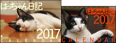 2017calendar-tsuhan-1.jpg