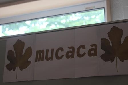 mucaca1.jpg