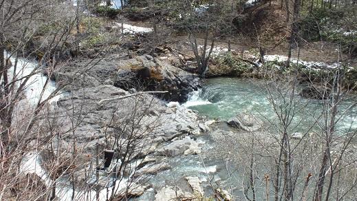 白滝 (4)