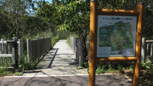 キウシト湿原 (7)