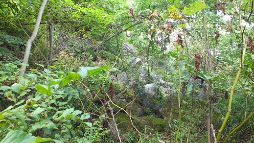 ts山洞窟 (4)