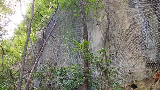 TS山洞窟 (32)