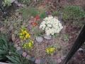 よそのお庭2
